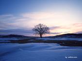 落日系列:冬天.jpg