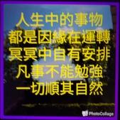 隨手拍:P_20200512_181222_1_1.jpg