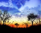 落日系列:風景桌布四.jpg