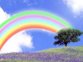 彩虹系列:0.jpg