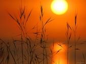 落日系列:日出日落.jpg