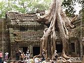 96吳哥窟:A1124塔普倫廟-吳哥窟