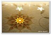 99阿布達比-阿拉伯聯合大公國:A9902171423榭赫扎伊清真寺-阿布達比.jpg
