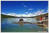 107-3西藏B:A10709120497羊卓雍措.jpg