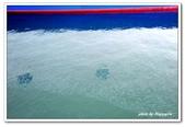 99富吉拉-阿拉伯聯合大公國:A9902160888魚群-碼頭-富吉拉-阿拉伯聯合大公國.jpg