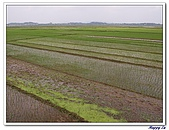 96北越:A0441田園景色-下龍灣往河內