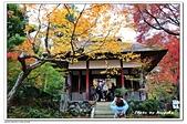 105京都賞楓:A10511251265楓紅-常寂光寺-嵐山-京都.jpg