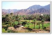99富吉拉-阿拉伯聯合大公國:A9902160972沙漠綠洲-富吉拉-阿拉伯聯合大公國.jpg