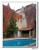 94南法普羅旺斯:261A0370飯店池畔-亞耳