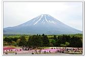 104日本_箱根、河口湖:A10405111941富士芝櫻祭-河口湖.jpg