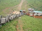 95雲南香格里拉:A314氂牛坪