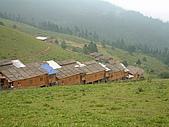 95雲南香格里拉:A315氂牛坪
