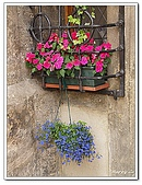 96捷克-窗之藝術:A76163297窗-銀幣博物館-塔拉小鎮