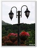 96磺溪水石之美:A7429206街燈-竹仔湖