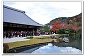 105京都賞楓:A10511251495天龍寺-嵐山-京都.jpg