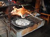 95雲南香格里拉:A321烤乳豬-氂牛坪