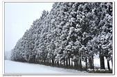 107日本東北、草津溫泉:A10701260141雪景-鬼怒川溫泉往大內宿.jpg