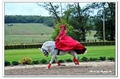 106匈牙利:A10610052270馬術表演-馬術莊園-布達佩斯-匈牙利.jpg