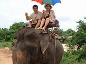 95泰國行:A141銓斐-騎大象-芭達雅