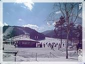 93韓國行:A0151龍平滑雪場