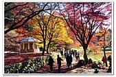105日本關西:A10511230457楓紅-雞足寺-琵琶湖.jpg