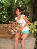 95泰國行:A165豹漫-東芭樂園