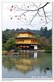 105京都賞楓:A10511272036金閣寺-京都.jpg