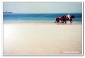 99阿布達比-阿拉伯聯合大公國:A9902171292海灘風情-翻拍-阿布達比.jpg