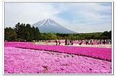 104日本_箱根、河口湖:A10405111993富士芝櫻祭-河口湖.jpg