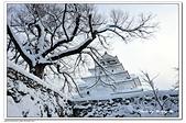 107日本東北、草津溫泉:A10701260293若松城-會津.jpg