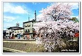 99日本立山、合掌村(二):A9904241302櫻花-高山.jpg