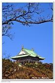 105日本大阪:A10512023061大阪城天守閣-大阪.jpg