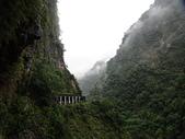 台灣旅遊:DSC03893.JPG