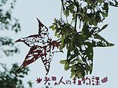 植物課-青楓:照片10 (01).jpg