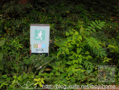 【就愛跑步】大阪 大阪城公園慢跑:大阪城公園慢跑-1507 (08).JPG