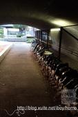 【就愛跑步】大阪 中之島到大阪城公園慢跑:1711-慢跑中之島大阪城-12.jpg
