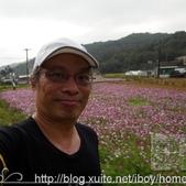 【就愛跑步】2015 世外桃園馬拉松:相簿封面