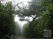 親山步道-陽明山/大屯山-二子坪:照片 (03).jpg