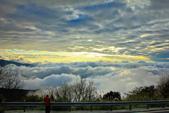 阿里山。夕陽雲海:IMG_7262.jpg