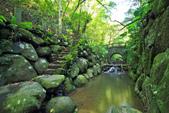 虎山溪。:IMG_10332.jpg