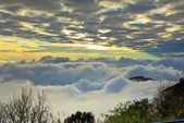 阿里山。夕陽雲海:IMG_7270.jpg