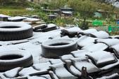 雪。陽明山:IMG_7184.jpg