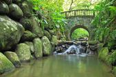 虎山溪。:IMG_10330.jpg