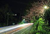 櫻。花園新城:IMG_7607.jpg