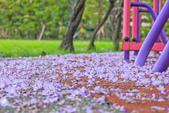 紫の浪漫。:IMG_8575.jpg