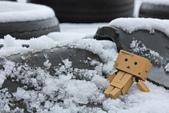 雪。陽明山:IMG_7176.jpg