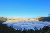 合歡山。雲海:IMG_1391.jpg