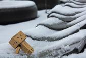 雪。陽明山:IMG_7177.jpg