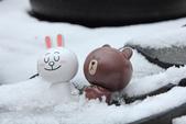 雪。陽明山:IMG_7183.jpg