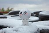 雪。陽明山:IMG_7185.jpg